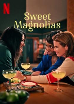 A l'ombre des magnolias (Série)