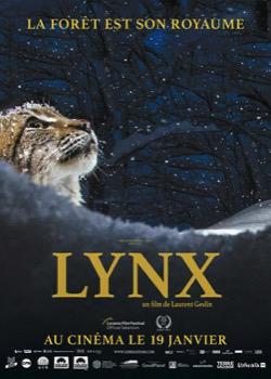 Lynx   height=