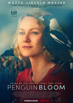 Penguin Bloom   height=