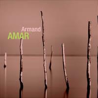 Armand Amar (Collection Rétrospective)