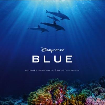 bo blue2018
