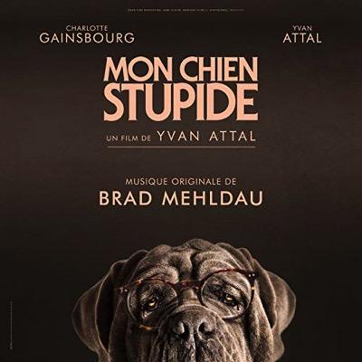bo mon-chien-stupide