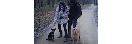 rouet,chiodo,chiens,@, - Angèle Chiodo et Julie Roué sur LES CHIENS : un décalagevocal